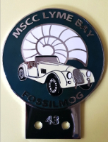 badge Morgan :MSCC Lyme ivory